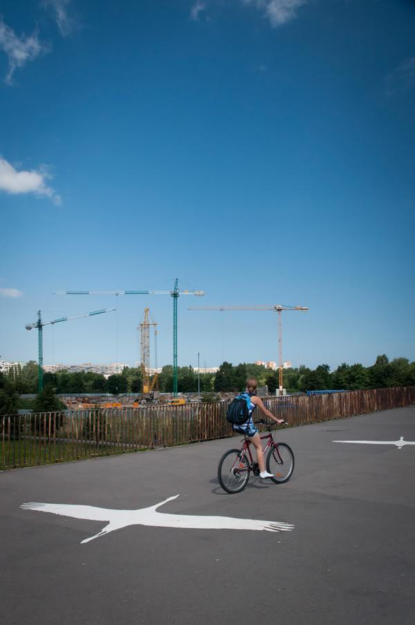 zaspa; wiadukt; ptaki; birds; dźwigi; cranes; rower; bicycle