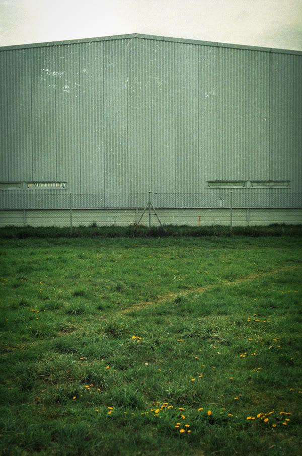 Zaspa; Budynek; building; trawa; grass