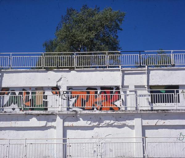 Orłowo; mur; wall; barierki; barriers; drzewo; tree