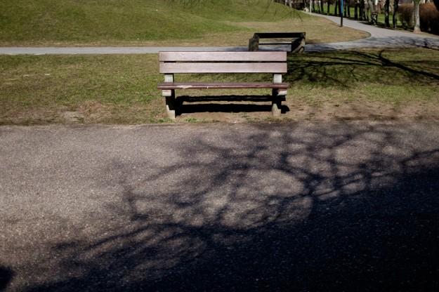 ławka; bench; cień; shadow