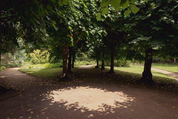 park oliwski, oliva park, Gdańsk