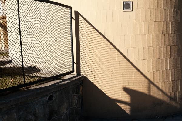 płot, fence, ściana, wall, cień, shadow